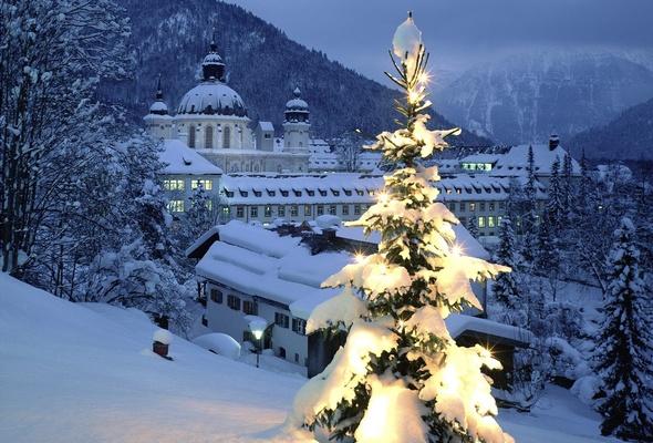 snow christmas new year winter christmas tree desktop wallpaper 590x400