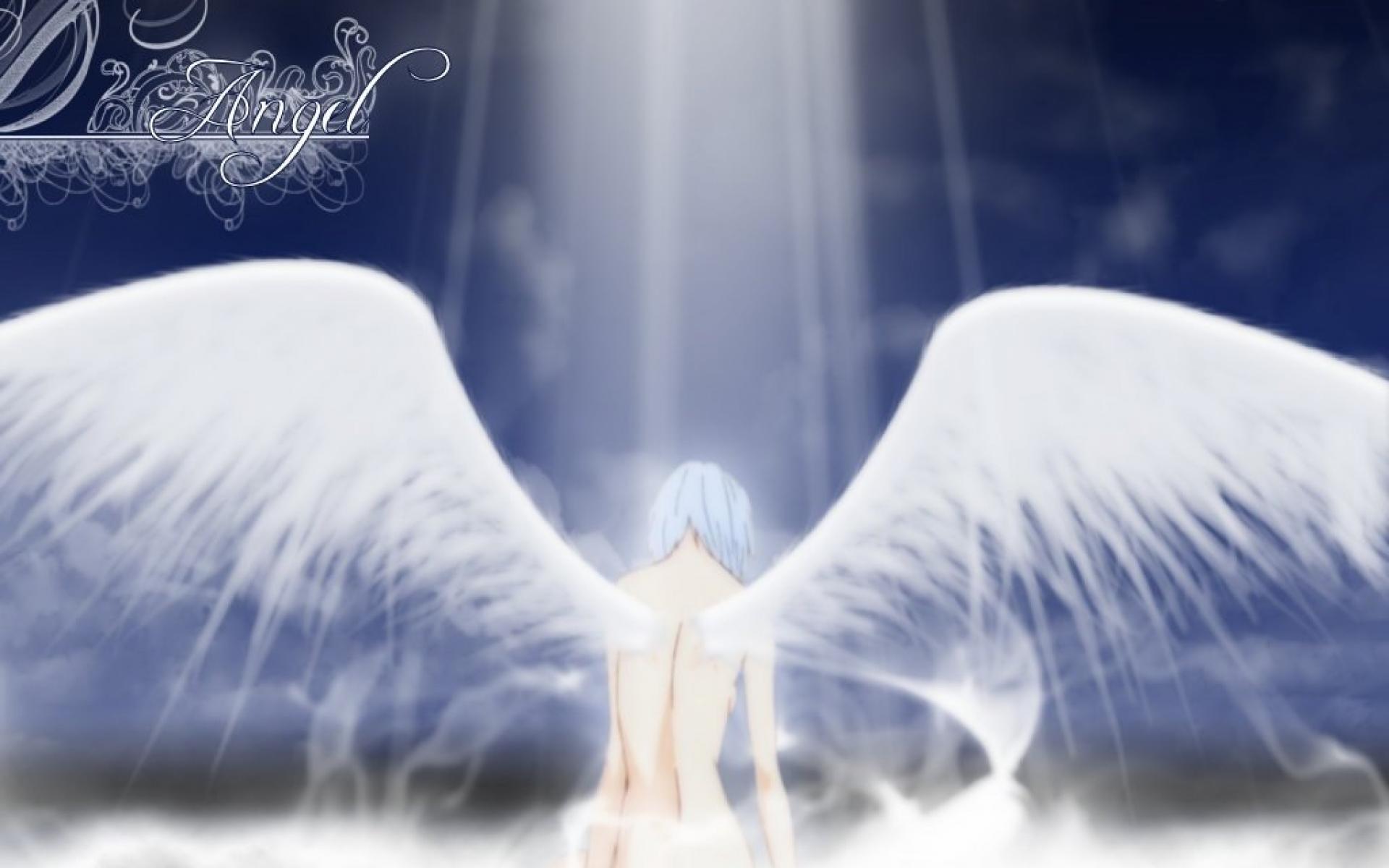 Rei Angel Wings Light Manga Anime HD Wallpaper 2343 1920x1200
