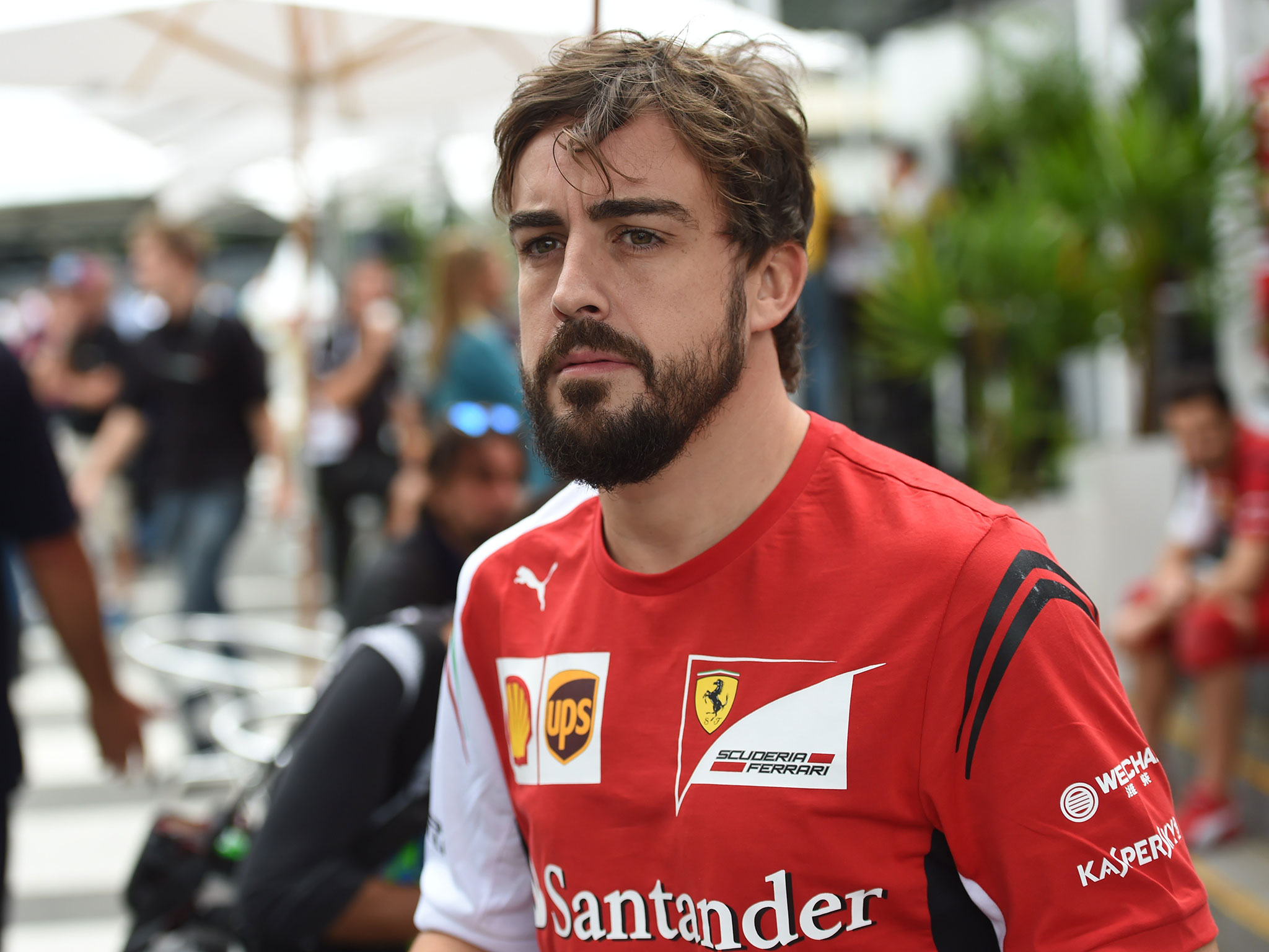 Fernando Alonso HD Wallpapers 2048x1536