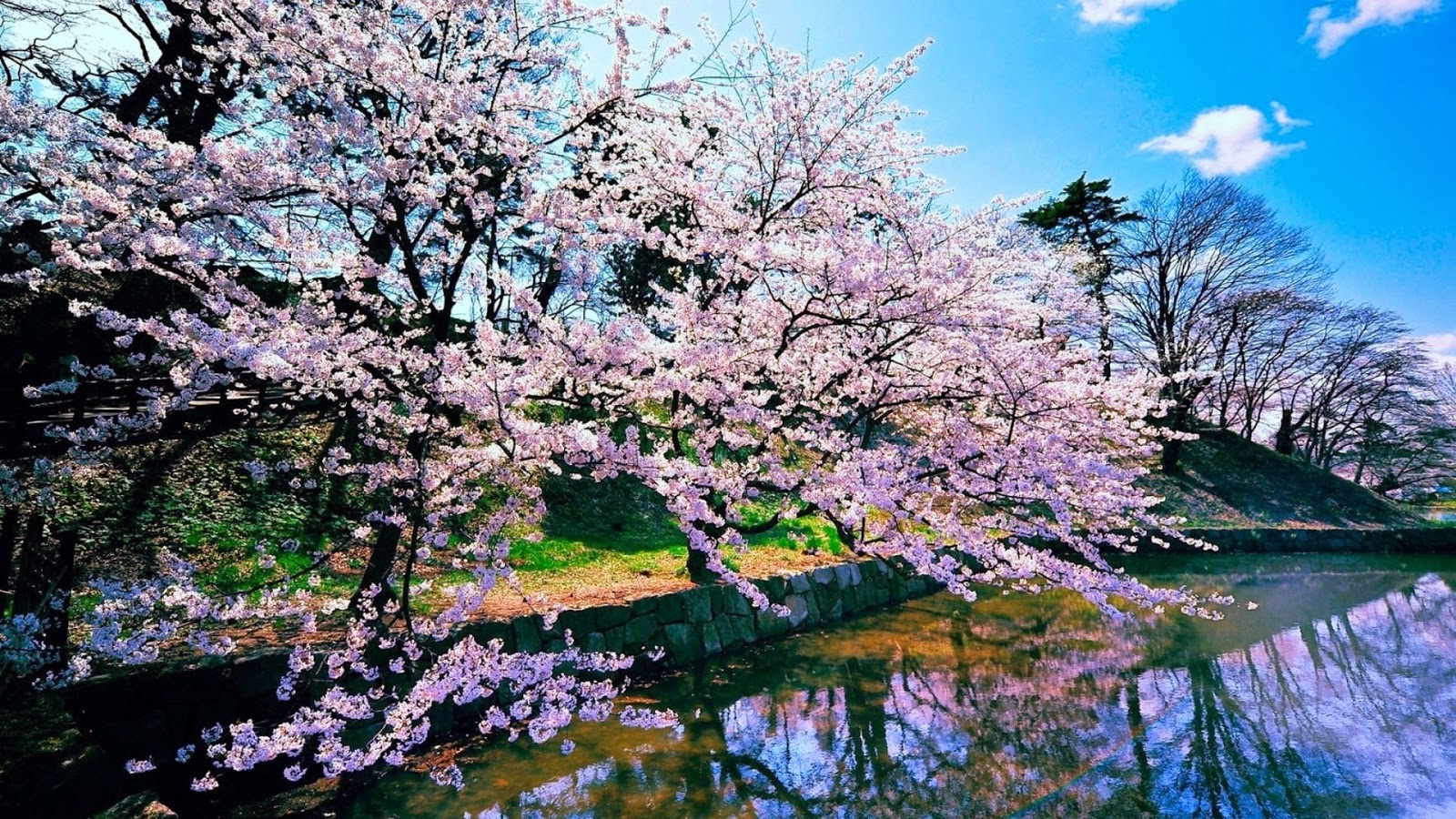 74 japanese nature wallpapers on wallpapersafari - Nature japan wallpaper ...