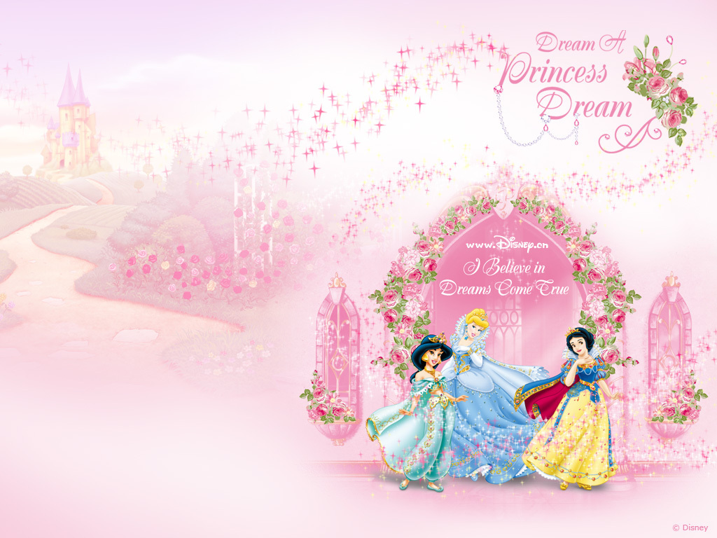 Disney Princesses   Disney Princess Wallpaper 8622232 1024x768