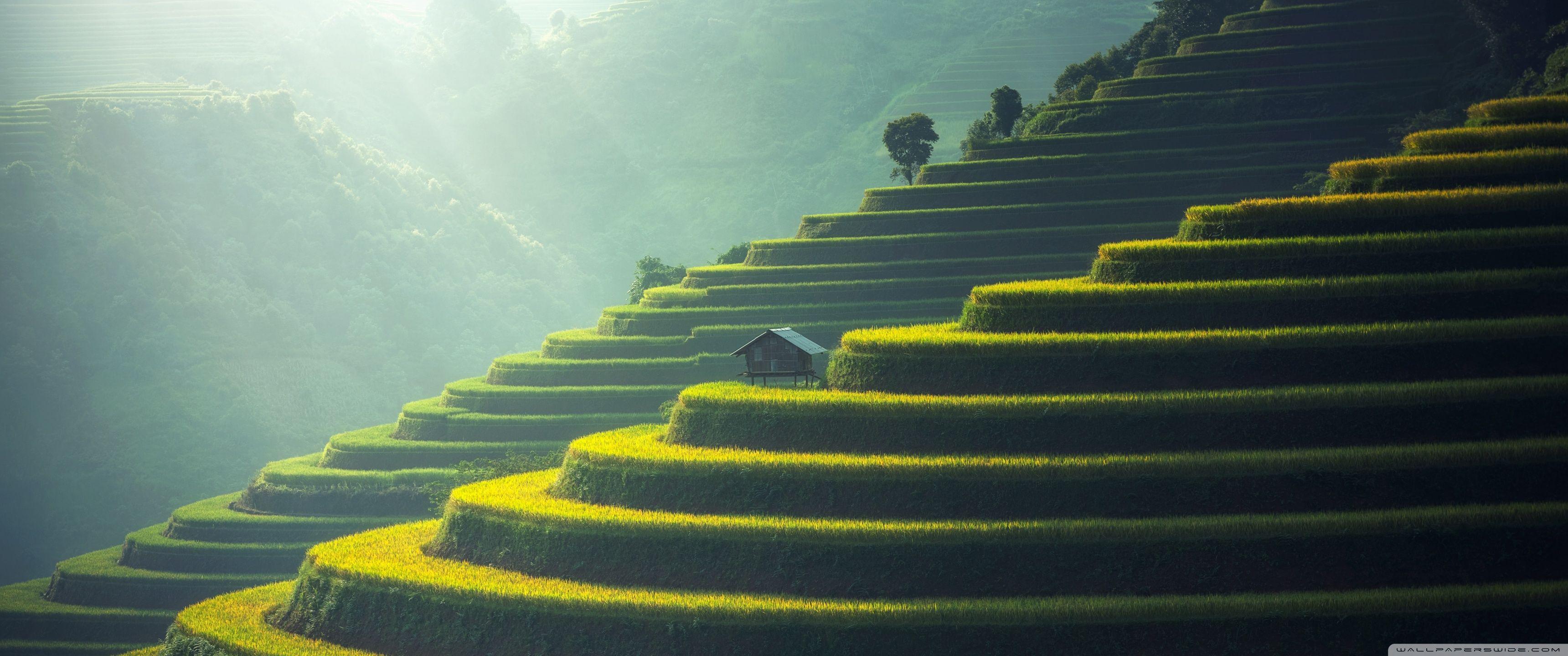 Asian Landscape Wallpapers   Top Asian Landscape Backgrounds 3440x1440