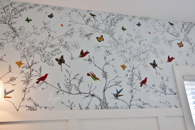 49 Schumacher Bird Wallpaper On Wallpapersafari