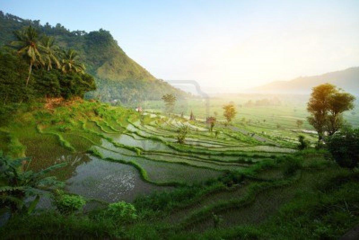 Bali Nature Wallpaper compilation HD Nature Wallpapers   BALI 1200x801