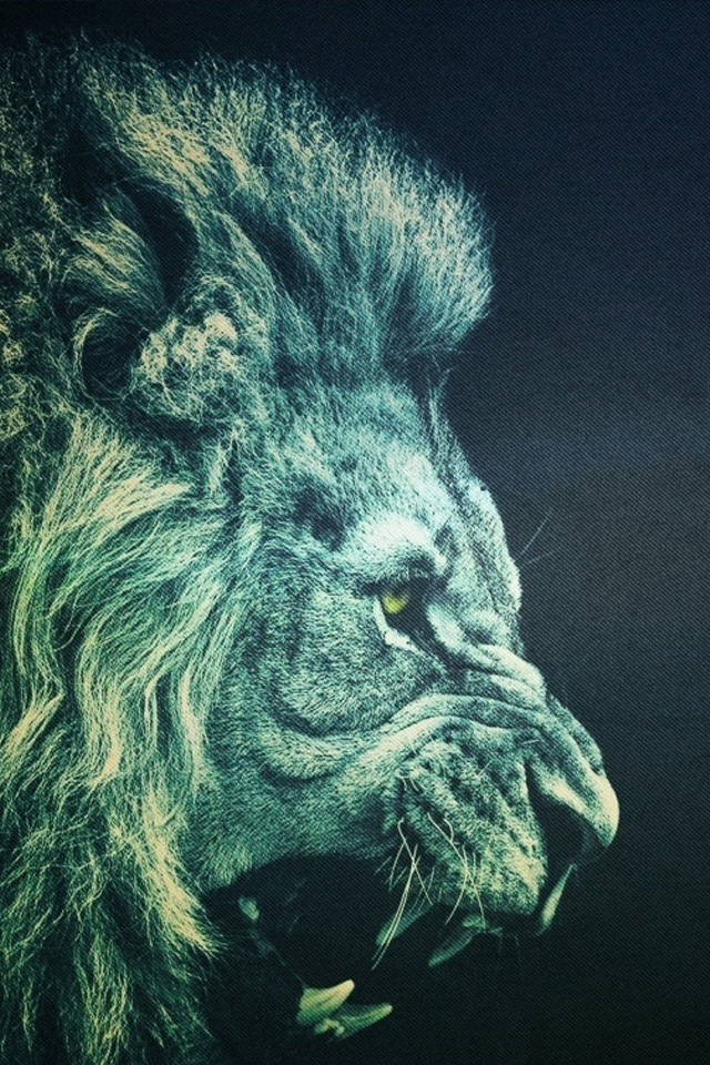 Wallpaper Angry Lion photos of Iphone 4s Backgrounds Here we have 640x960