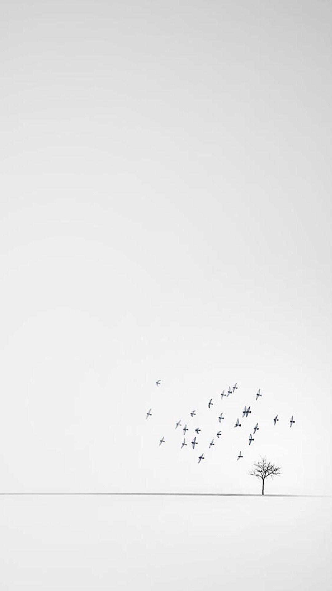 iPhone Minimalistic White   Wallpaper Minimalist wallpaper 1080x1920