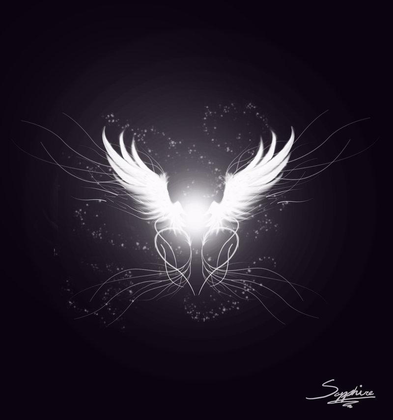 Angel Wing Design by Dannys angel 800x855