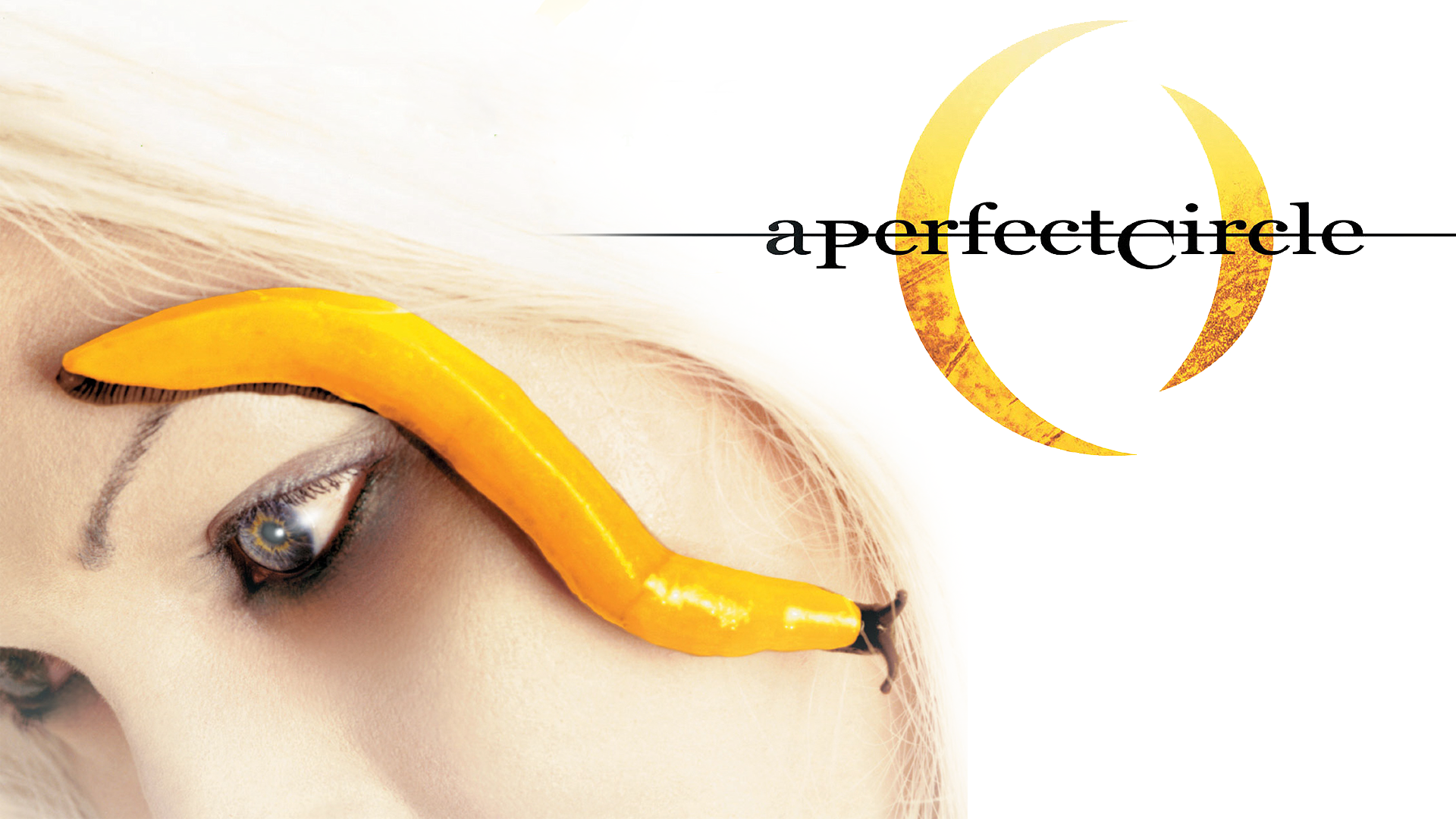 perfect circle wallpaper by sloas customization wallpaper other 2011 1920x1080