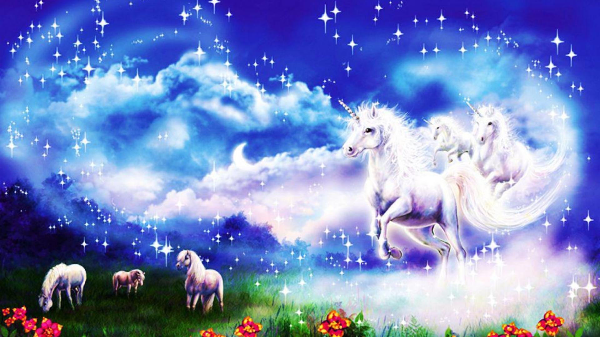 37 Hd Unicorn Wallpaper On Wallpapersafari