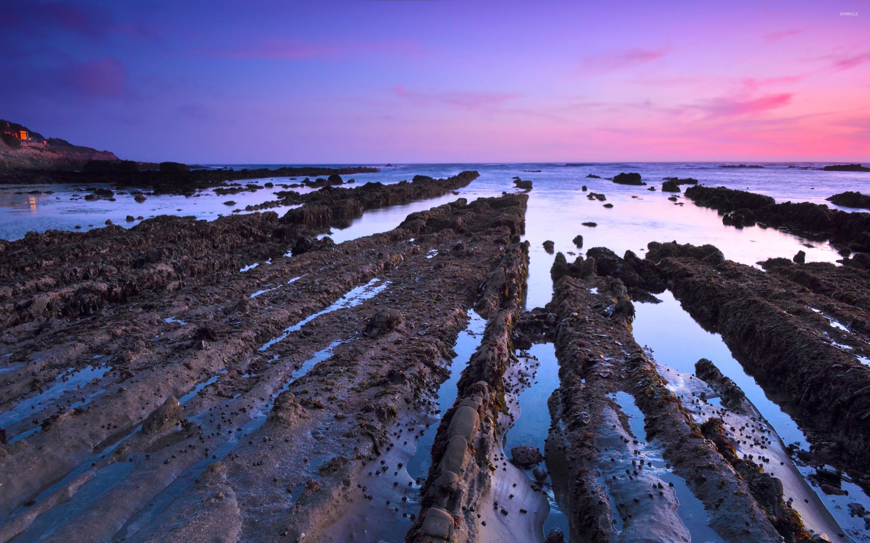 Mud trails towards the ocean wallpaper   Beach wallpapers   48371 2880x1800