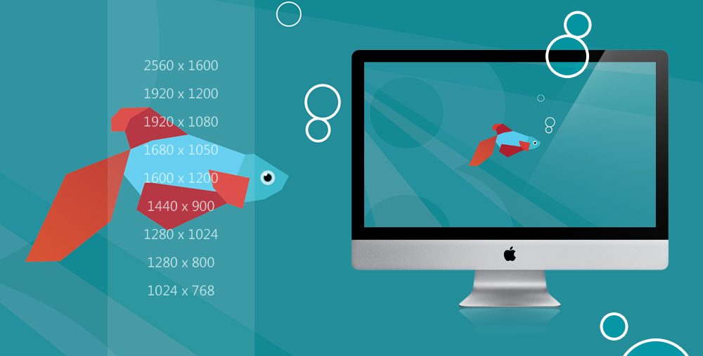 live fish wallpaper for windows wallpapersafariwindows 8 beta fish wallpaper pack by draganja 1000x506