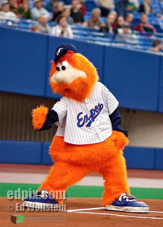 Youppi Mascot youppi entertains 540x750