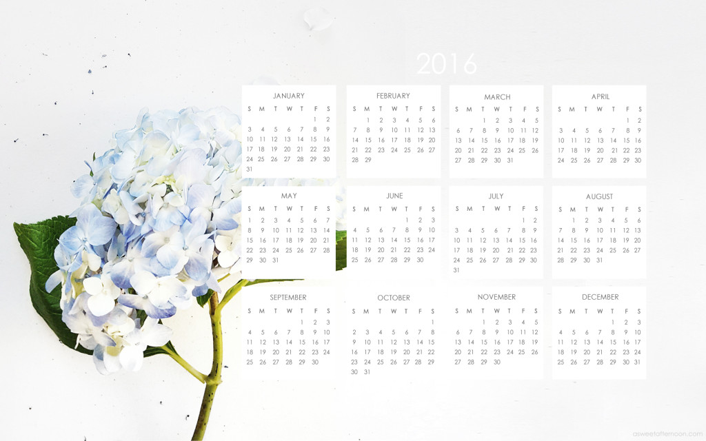 Happy 2016 2016 Calendar Blue Hydrangea Desktop Wallpaper 1024x640