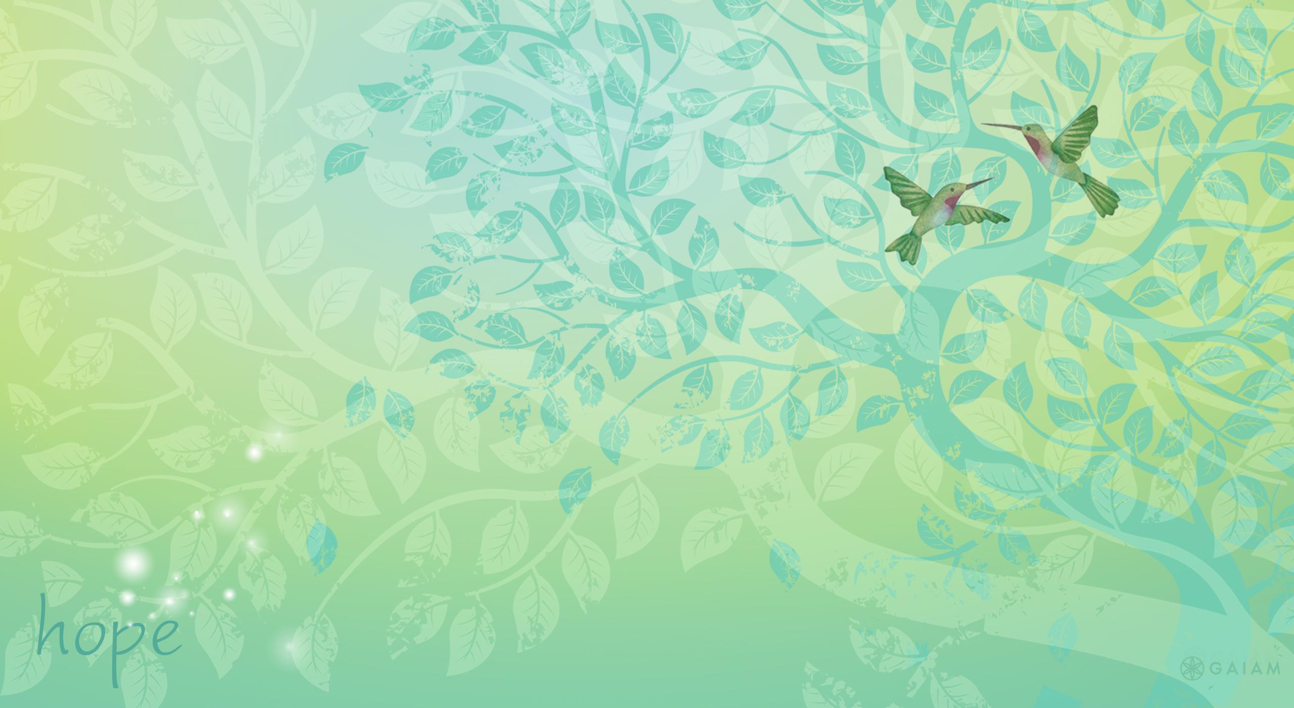 Happy Hope y Wallpapers   Gaiam Blog 2560x1400