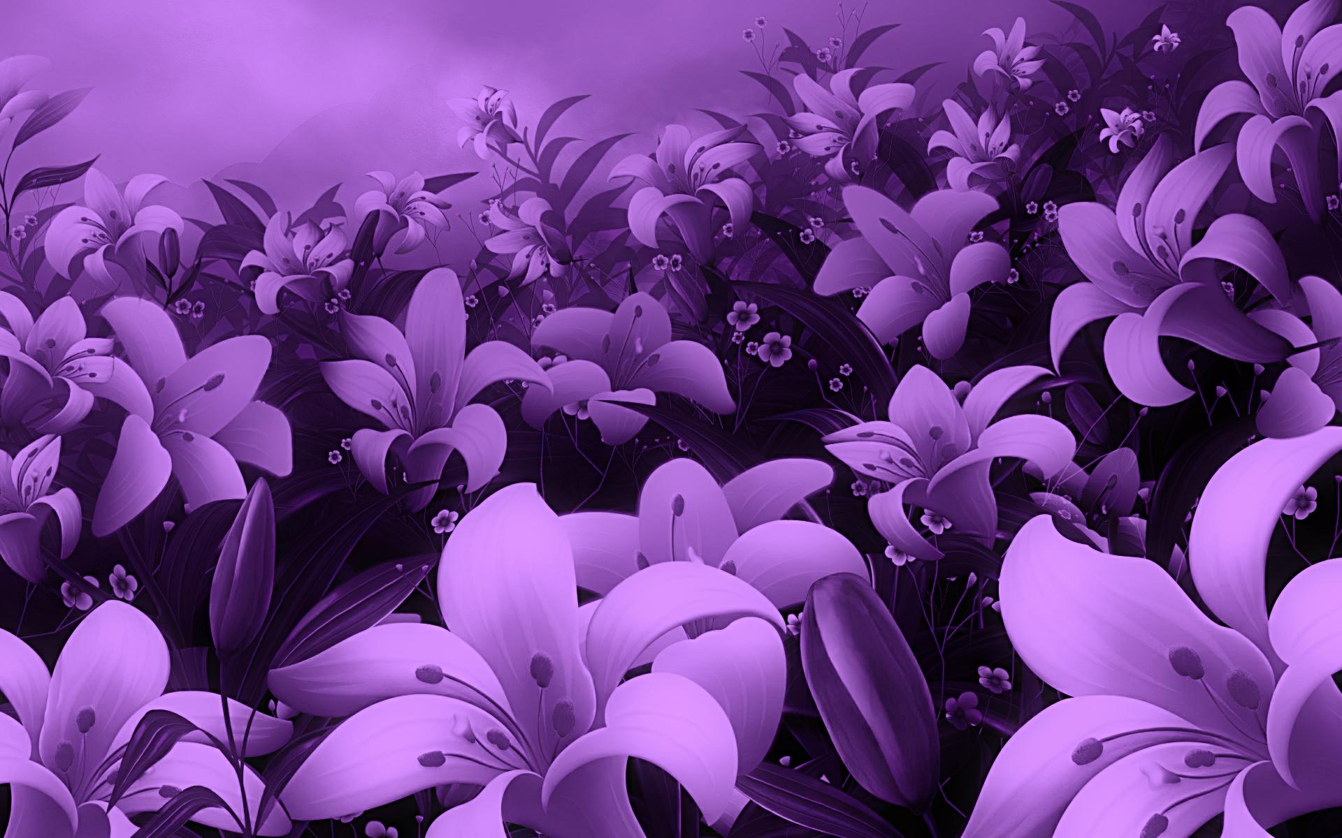 Purple Flowers Background 1920x1200