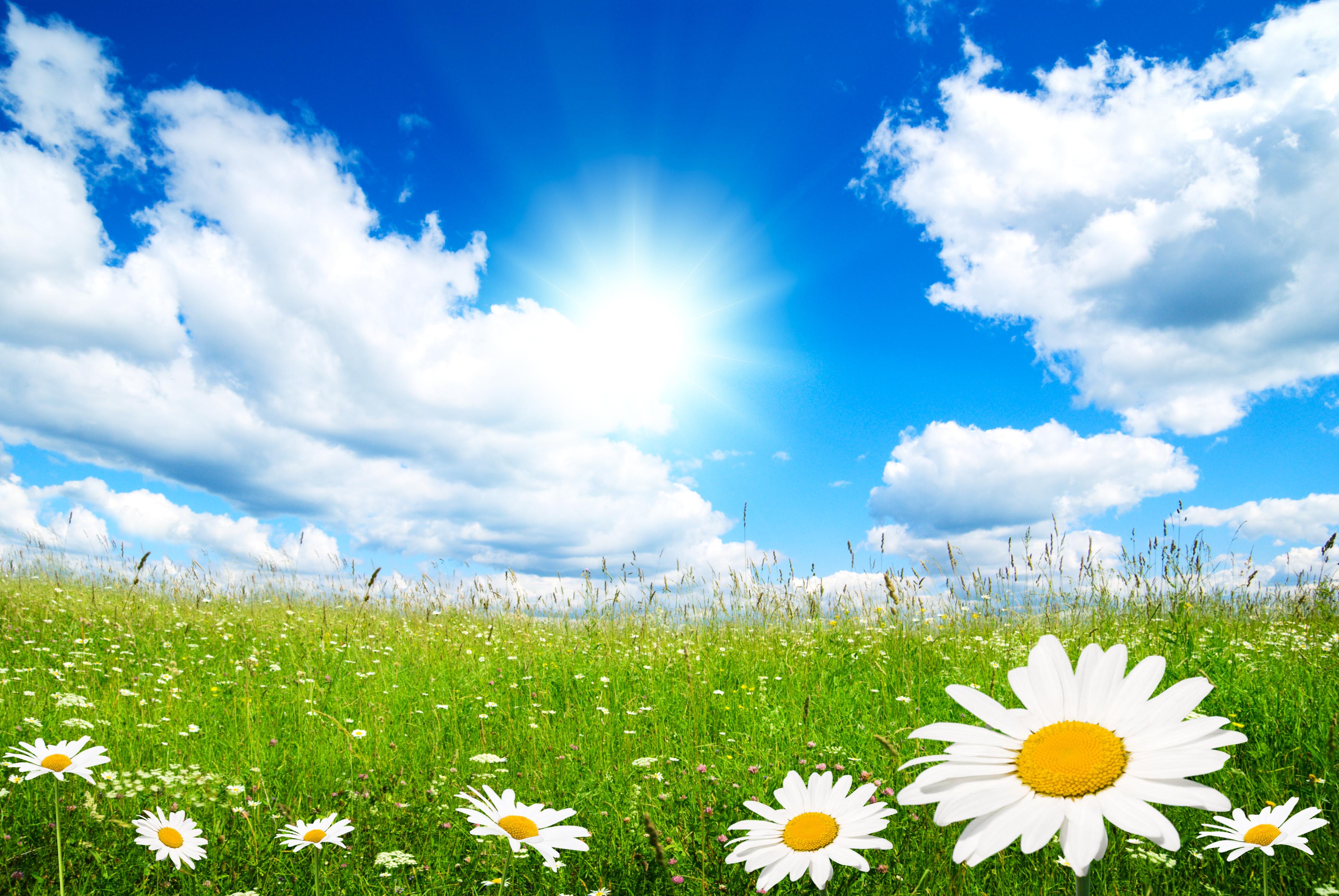 Spring Screensavers And Wallpapers Springtime HD Screensavers 3872x2592
