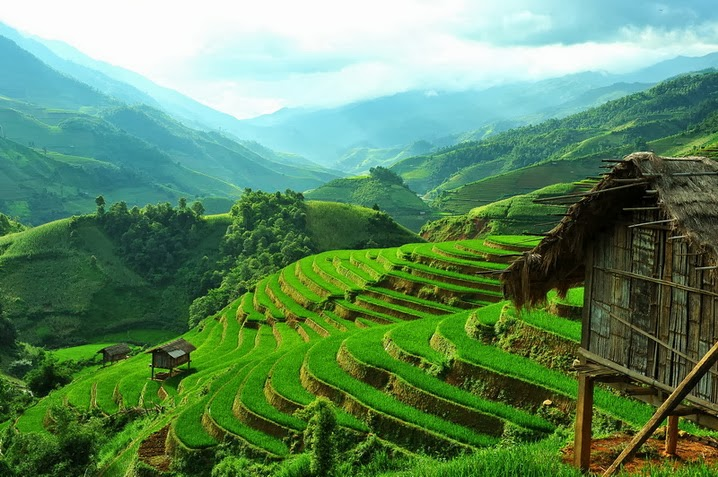 Beautiful Terraced Fields in Vietnam Most beautiful places in the 718x477