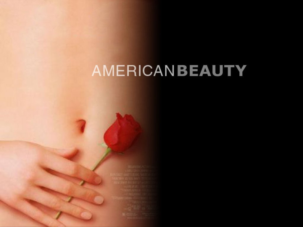American Beauty images American Beauty HD wallpaper and background 1024x768