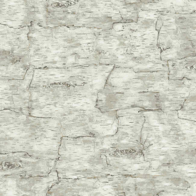Grey LM7987 Birch Bark Wallpaper   Lodge Outdoors Wallpaper 650x650