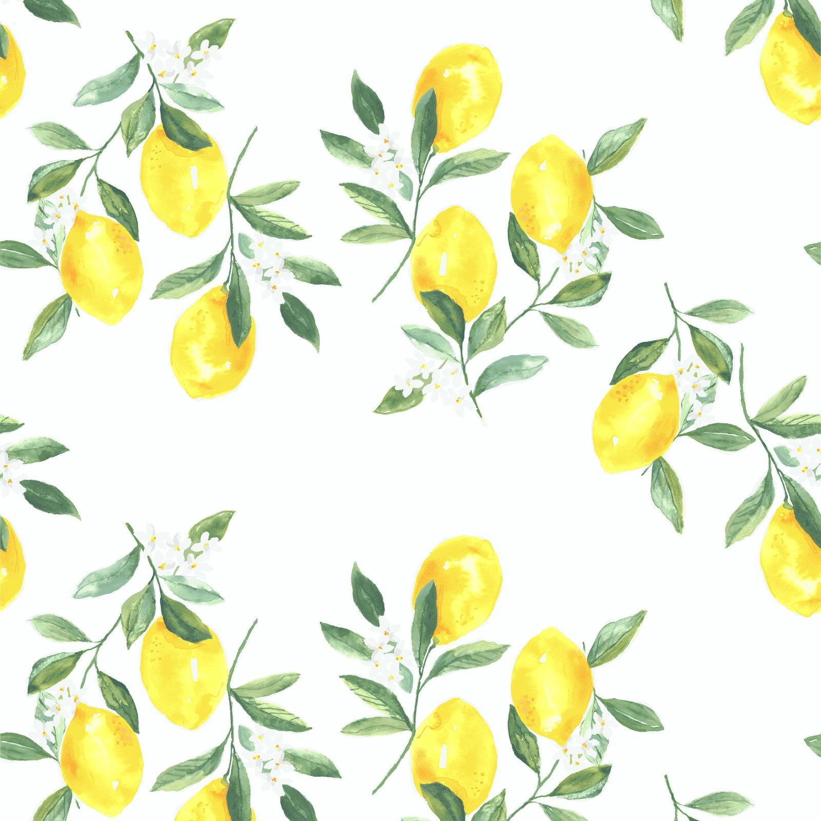 Fresh Squeezed Wallpaper in White Brooke Lou 1600x1600