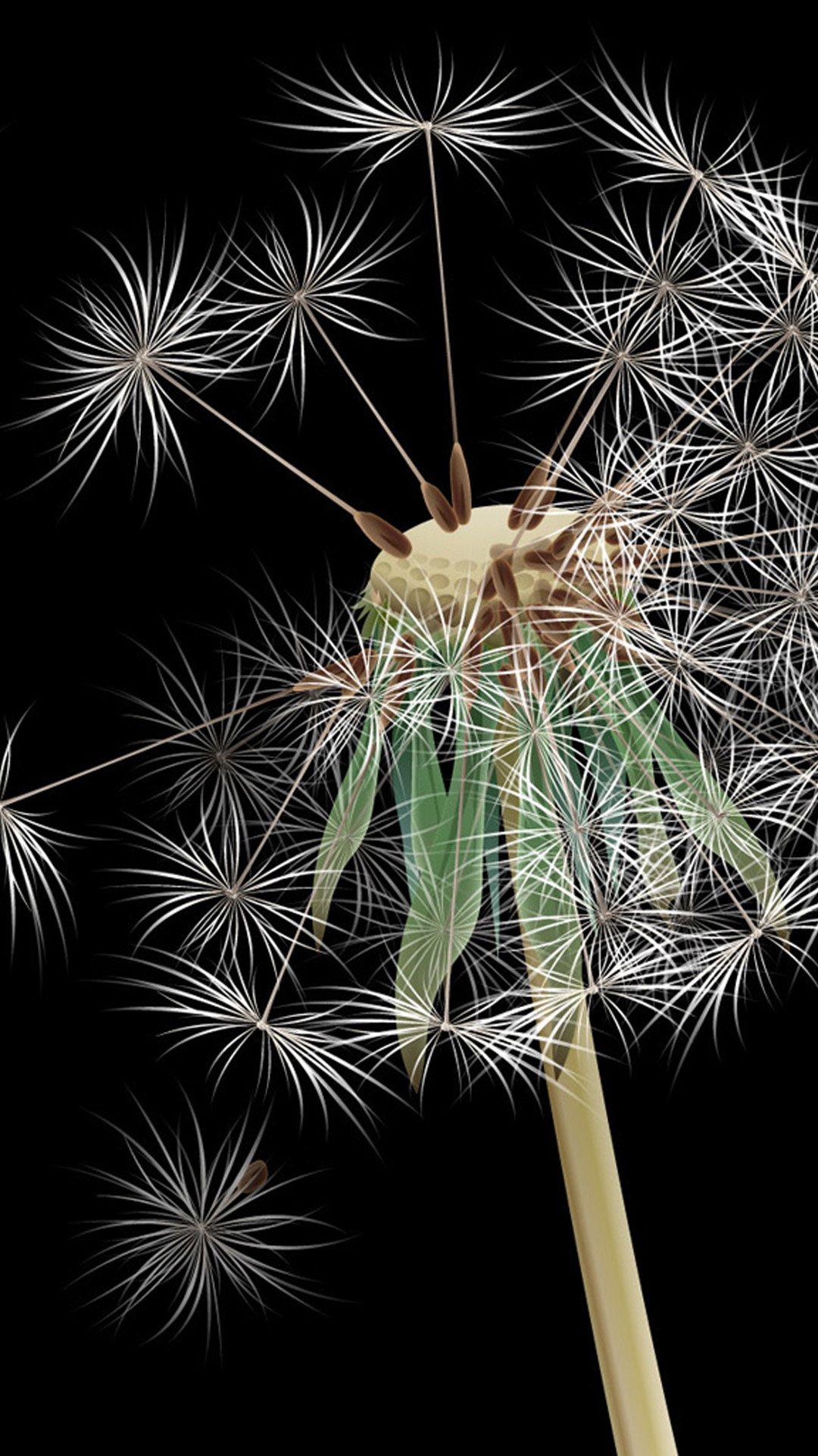 Dandelion Samsung Galaxy S5 Wallpapers