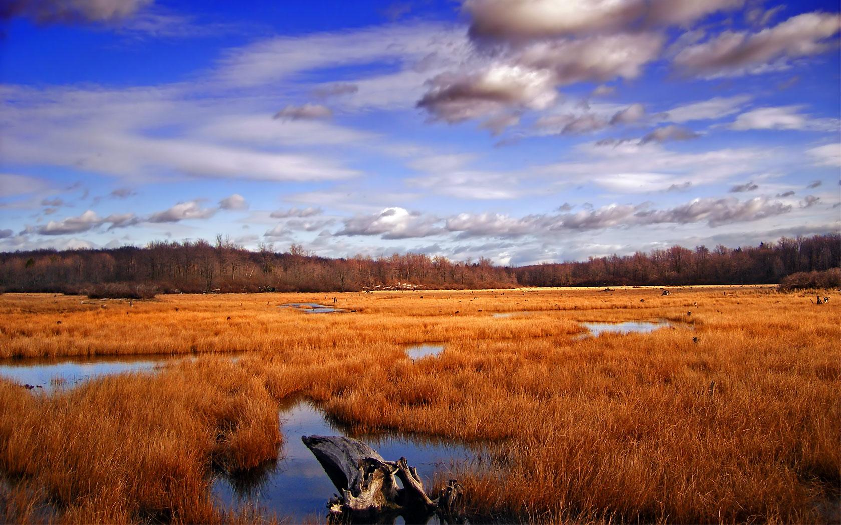 american landscape desktop backgroundjpg 1680x1050