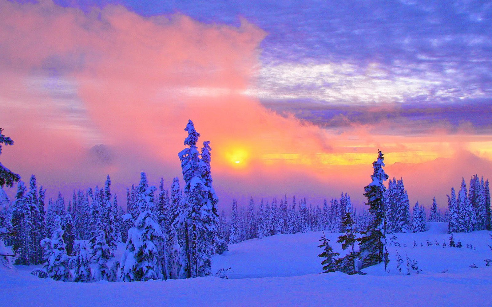 wallpapers Beautiful Winter Scenery Wallpapers 1600x1000
