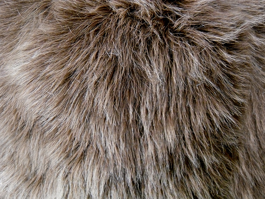 Shag Faux Fur 1 by Rhabwar Troll stock 1032x774