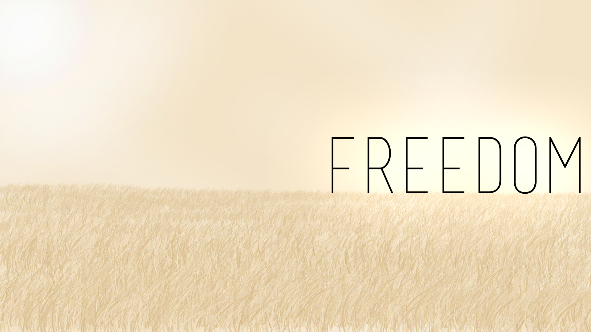 Freedom Wallpaper Picture 1920x1080