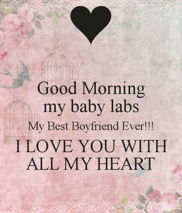 my baby labs My Best Boyfriend Ever I LOVE YOU WITH ALL MY HEART 600x700