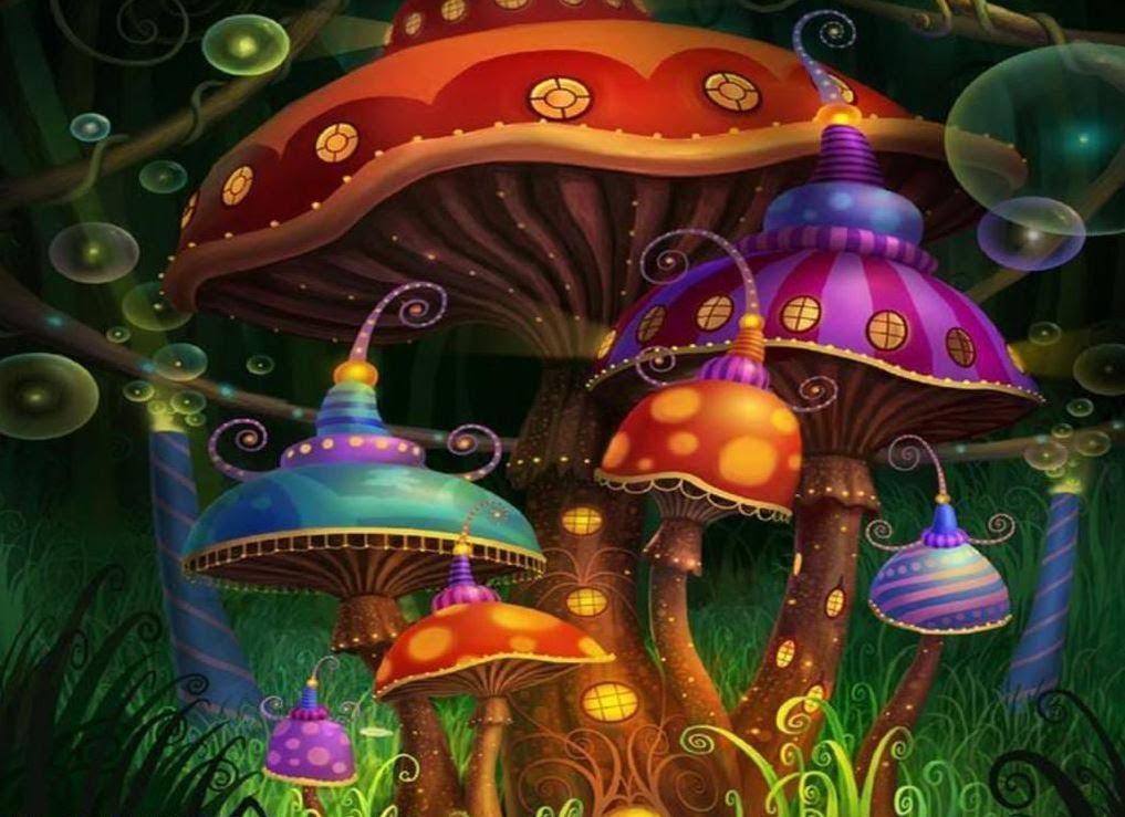 1200 Micrograms   Magic Mushrooms [Music Video] 1017x739