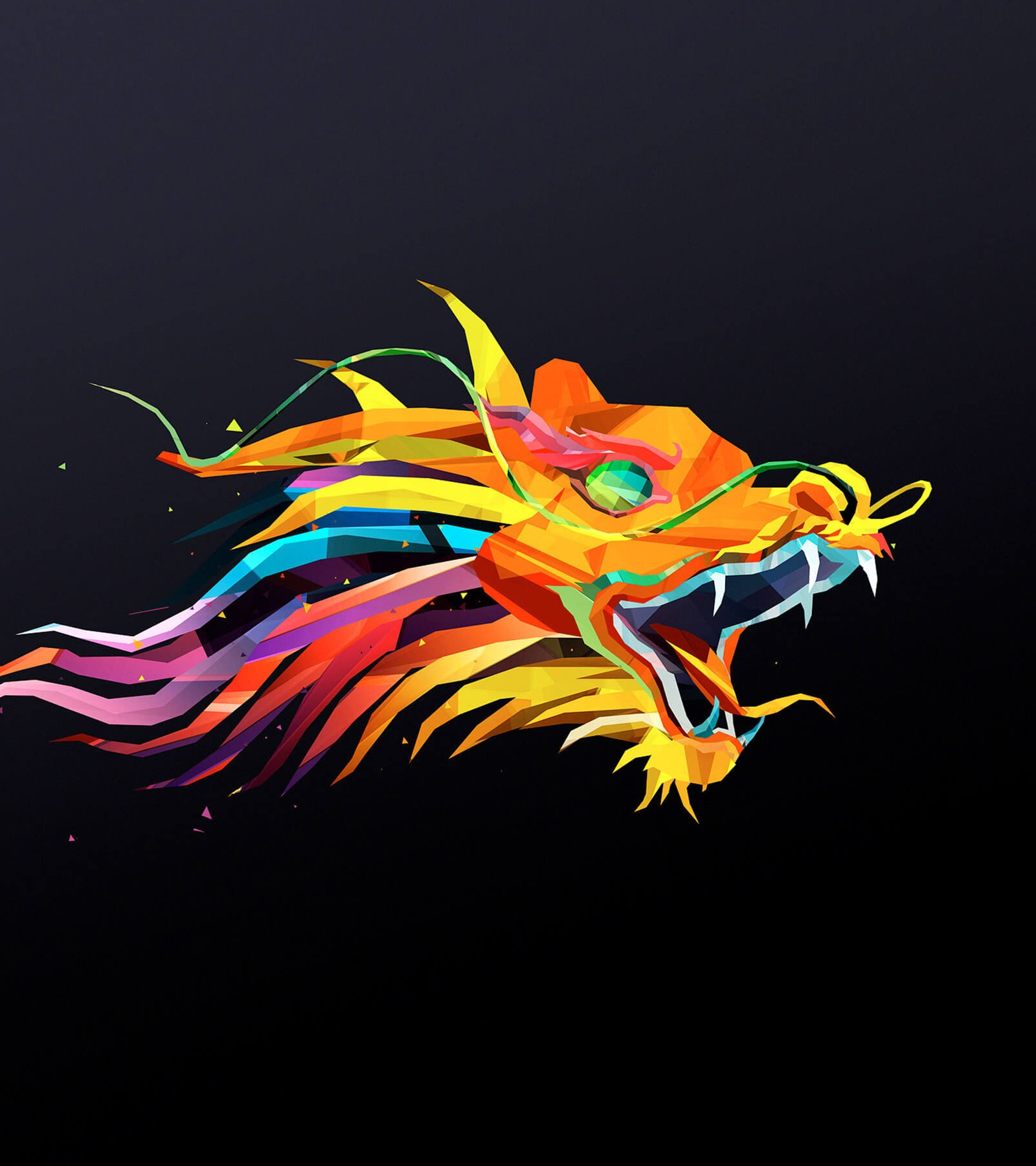 The Dragon HD wallpaper for Kindle Fire HDX 89   HDwallpapersnet 1600x1800