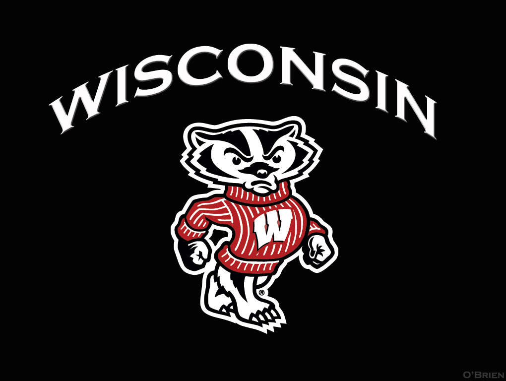 Wisconsin Badgers Games on DVD 1020x768