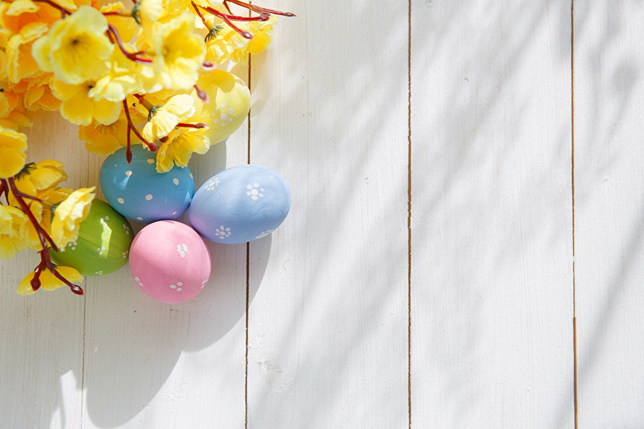 Wallpaper Easter egg Branches Template greeting card Holidays Wood 1280x853