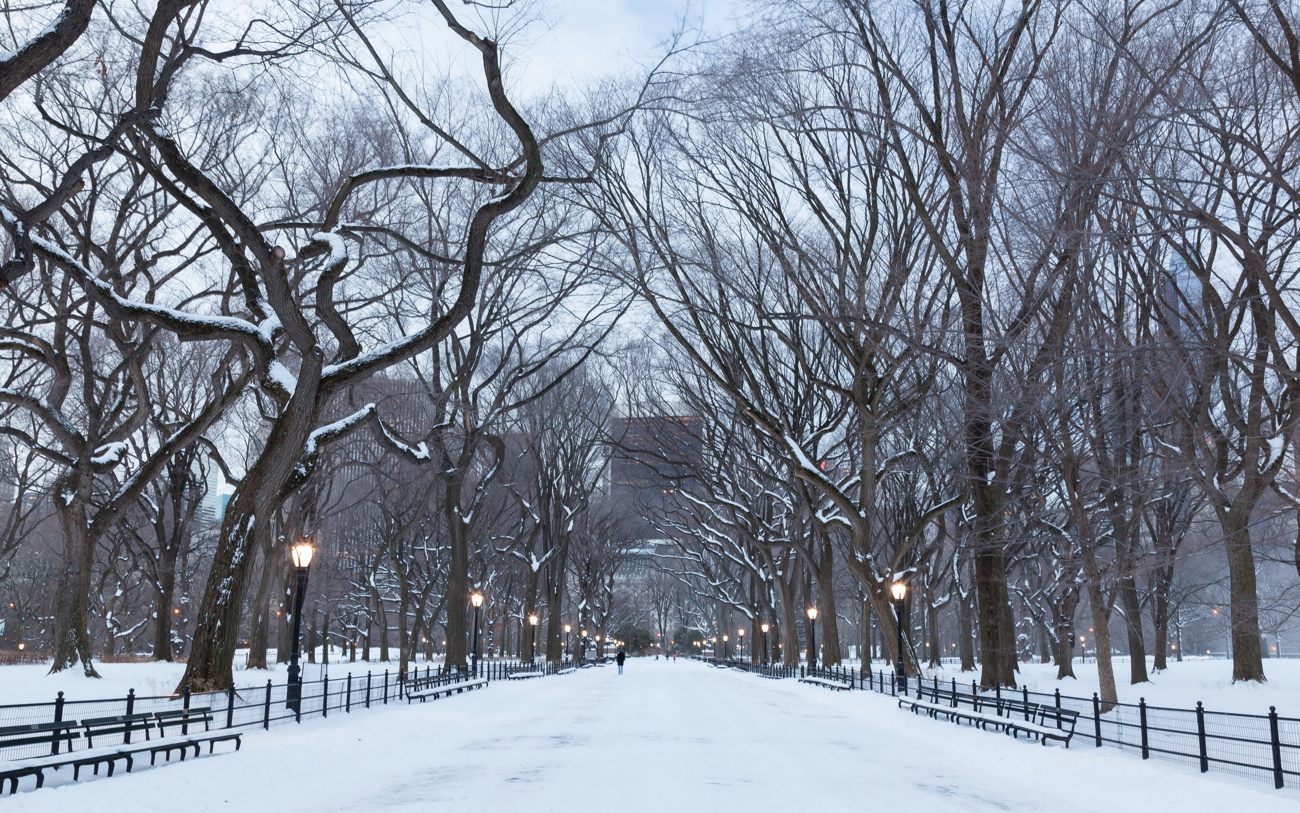 17014 new york winter wallpaper 2560x1600