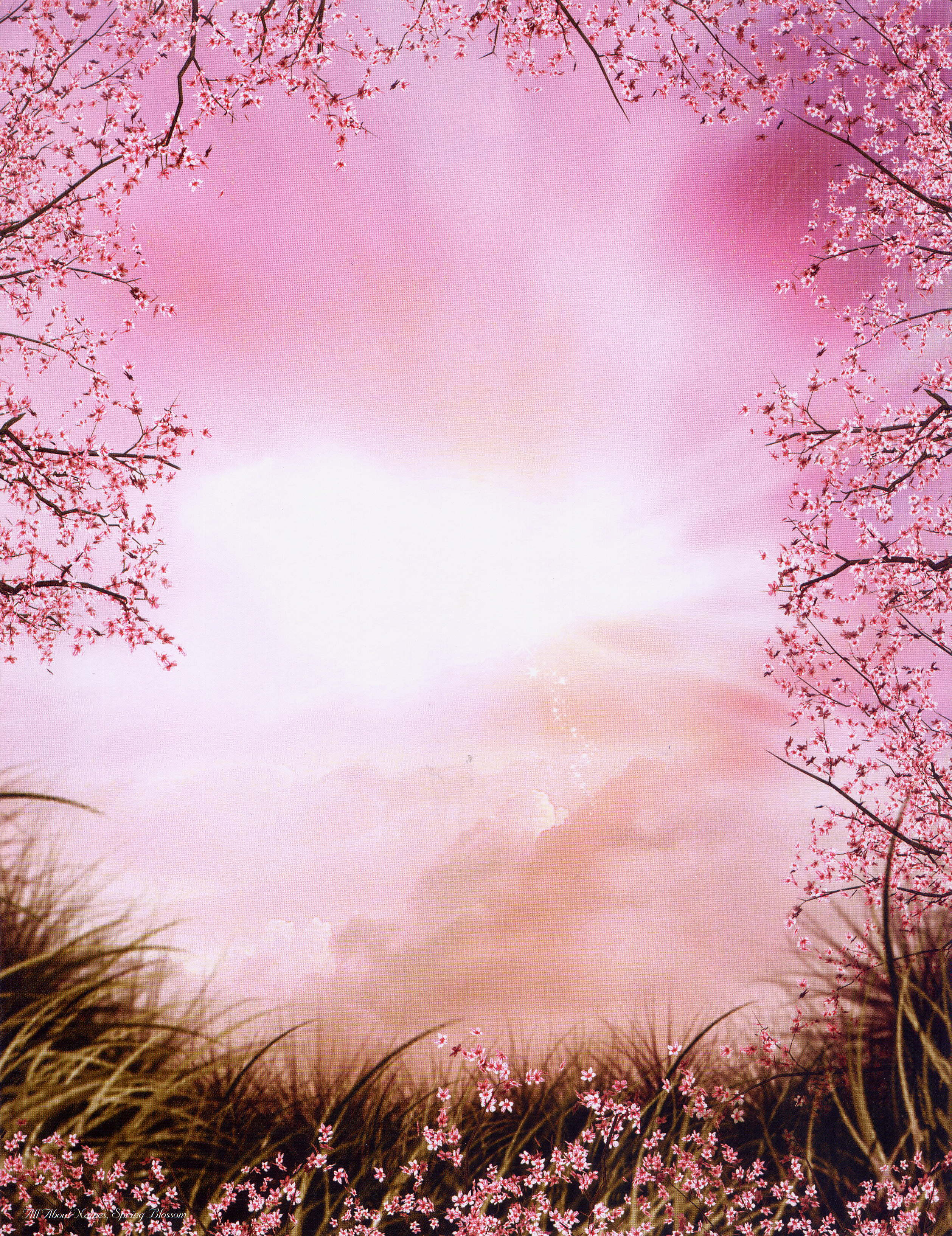 Best 43 Poet Backgrounds on HipWallpaper Poet Wallpaper Poet 2517x3268