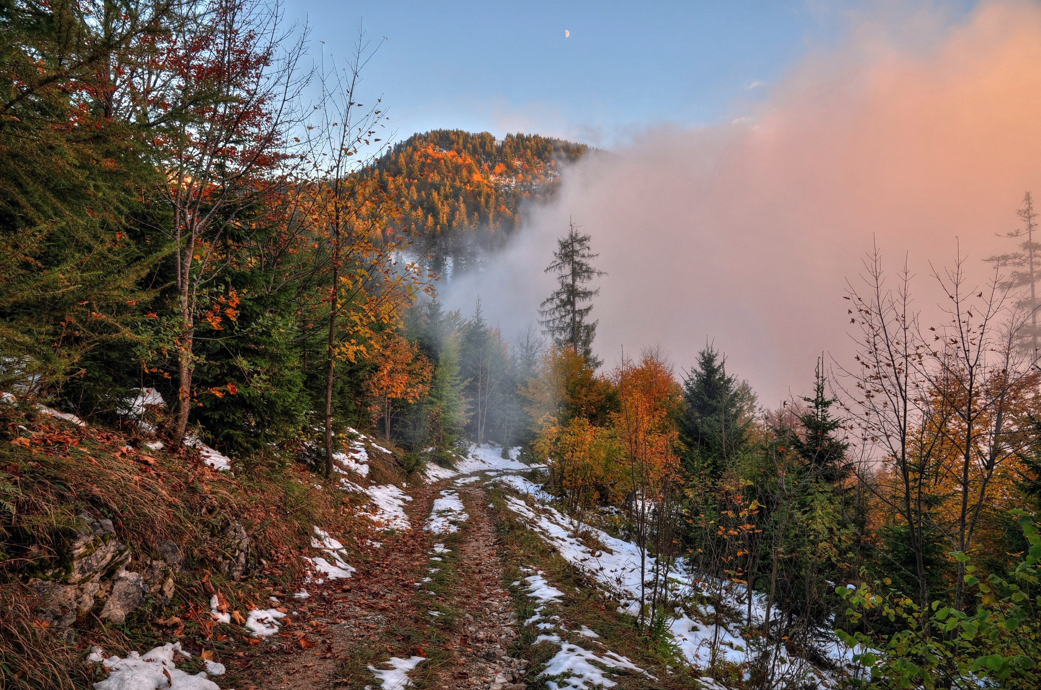 Autumn road trees landscape snow wallpaper 4278x2839 174846 4278x2839