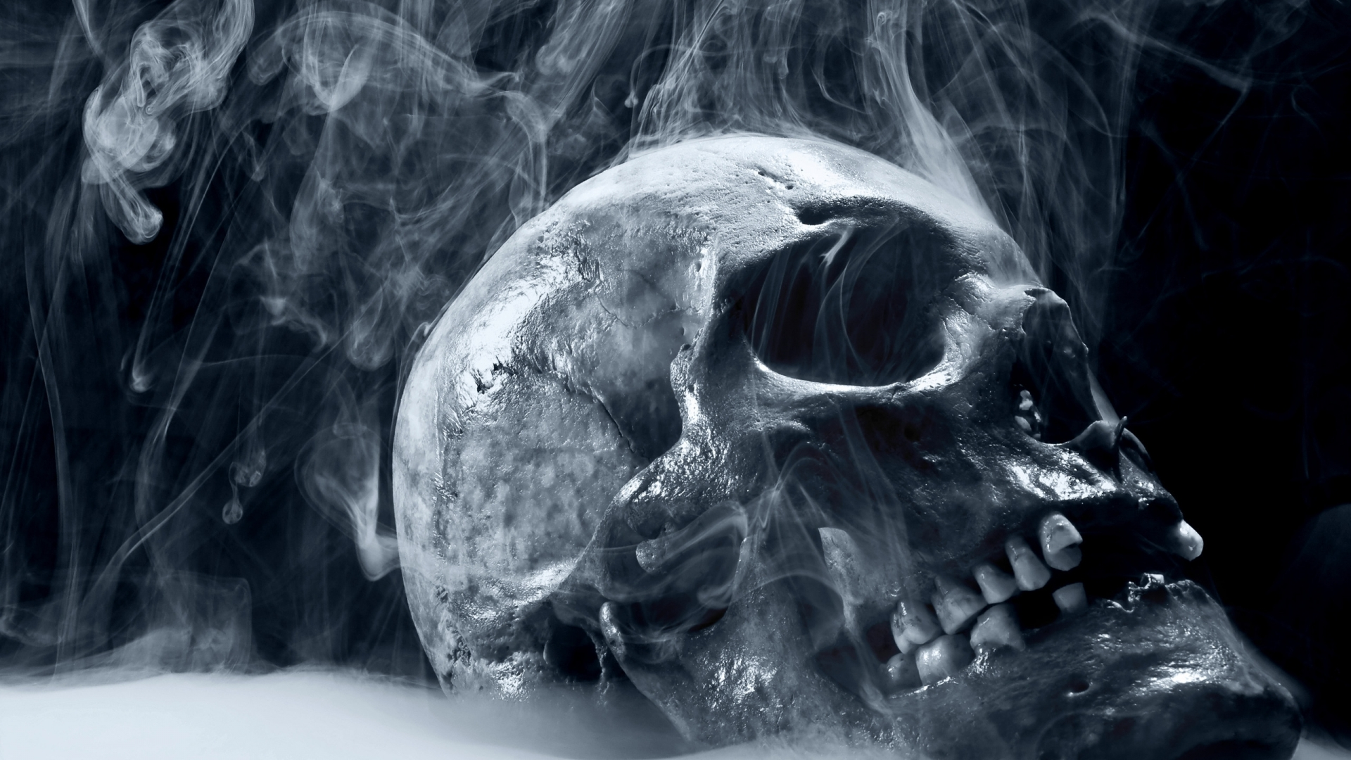 Scary Skull Wallpapers For Desktop 19201080 22746 HD Wallpaper Res 1920x1080