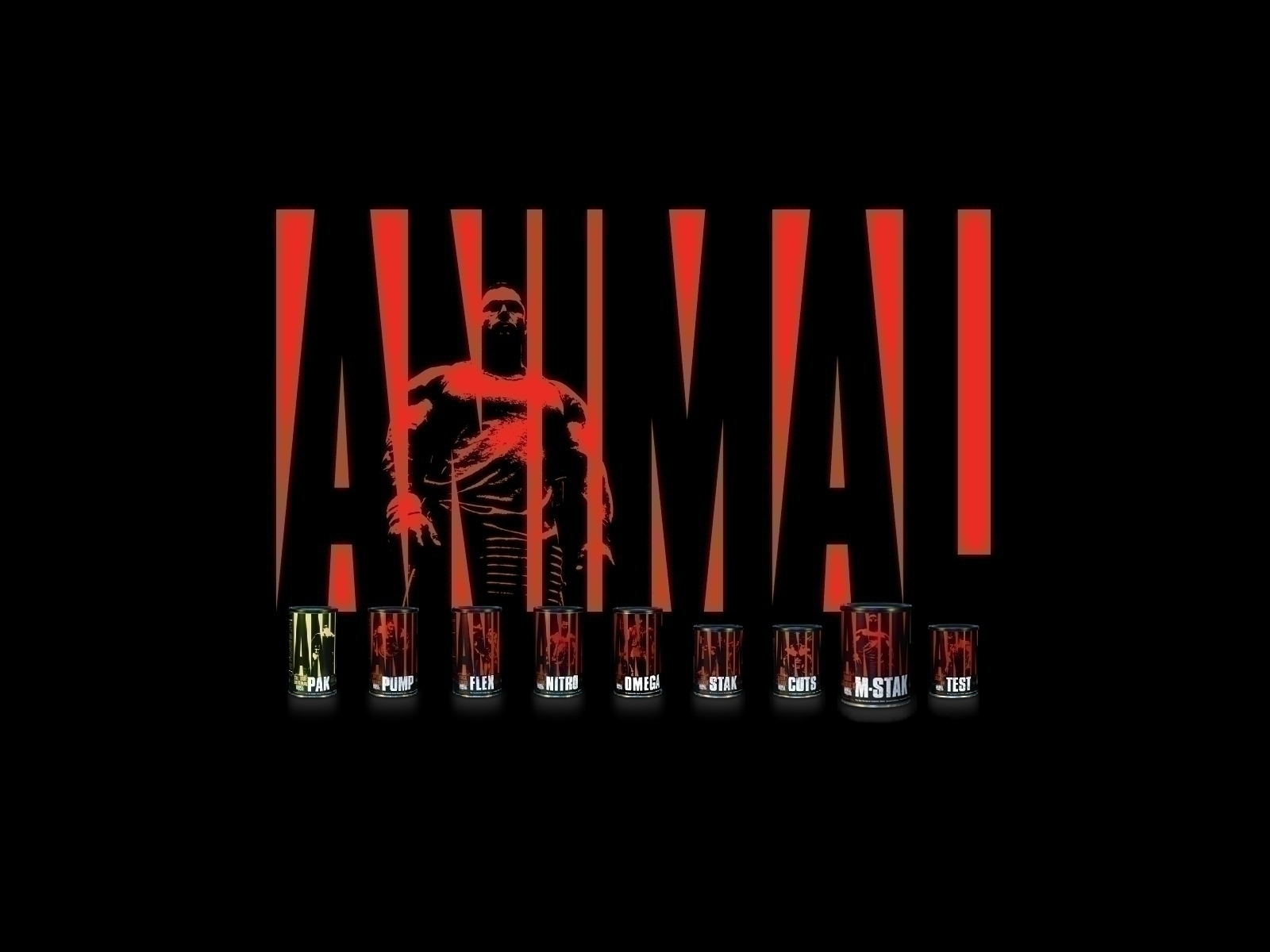 Animal Pak Wallpaper httpjobspapacomuniversal animal wallpaper 1600x1200