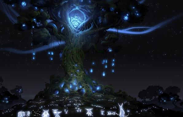 Wallpaper animals tree lights night spirit Ori And 596x380