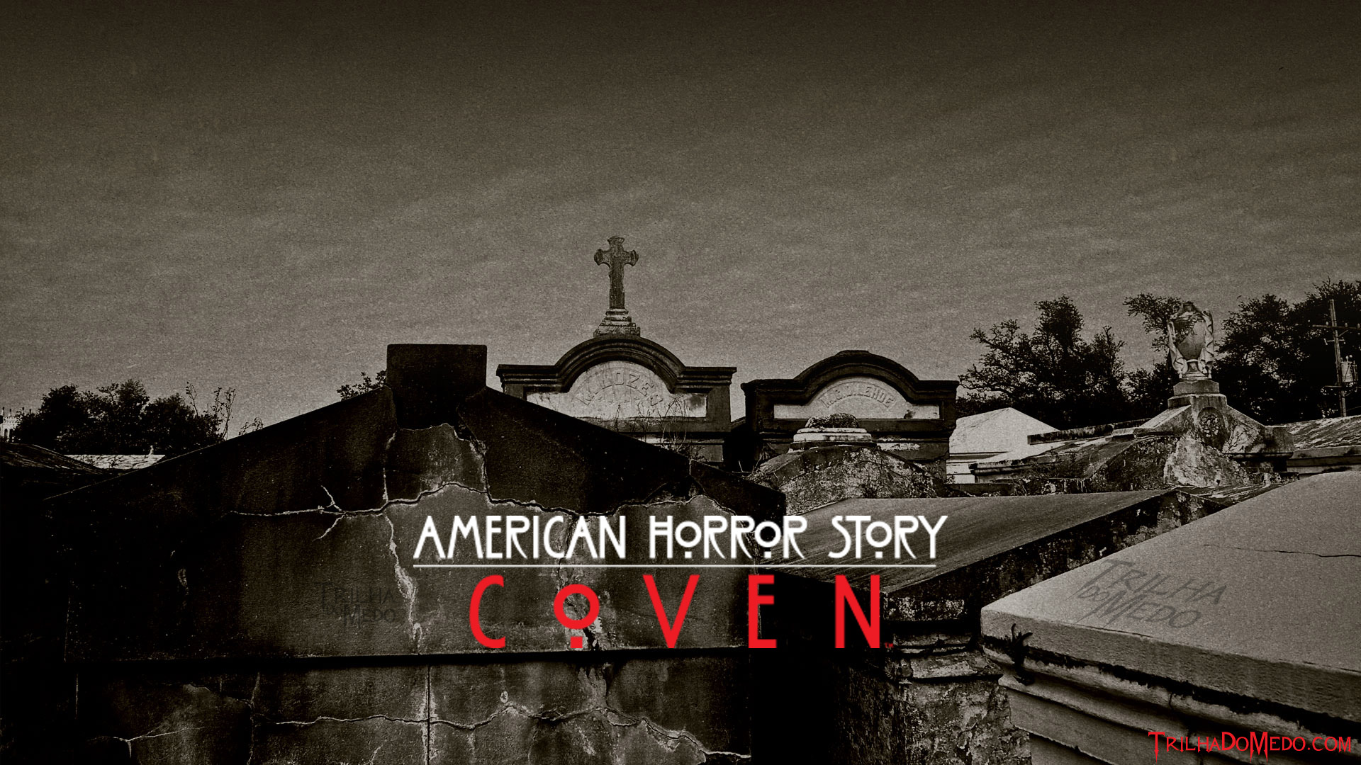Free Download 15942 American Horror Story Coven Wallpaper