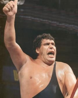 Andre The Giant Winner   WWE Superstars WWE Wallpapers 268x336
