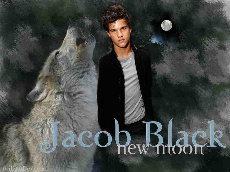 hombre lobo jacob black fondo de pantalla   ForWallpapercom 808x606