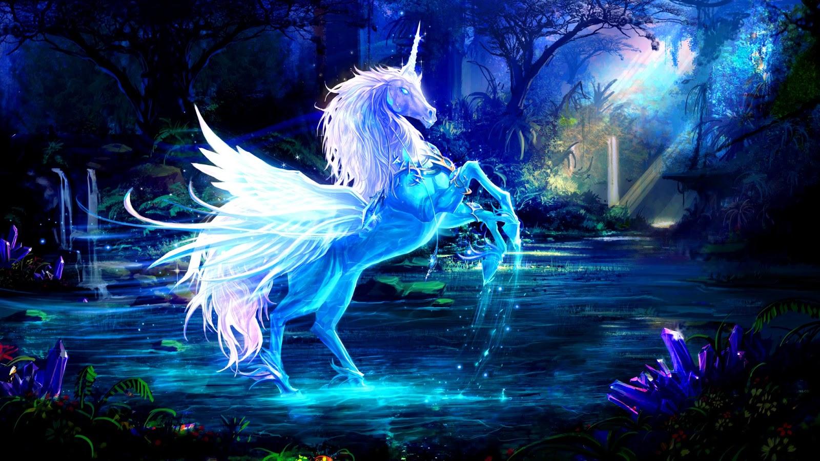 fantasy unicorn horse wallpapers widescreen high definition 1600x900