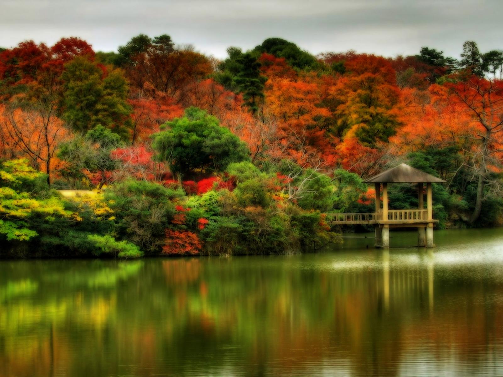 Beautiful Autumn Scenes WallpapersAutumn Wallpapers 1600x1200