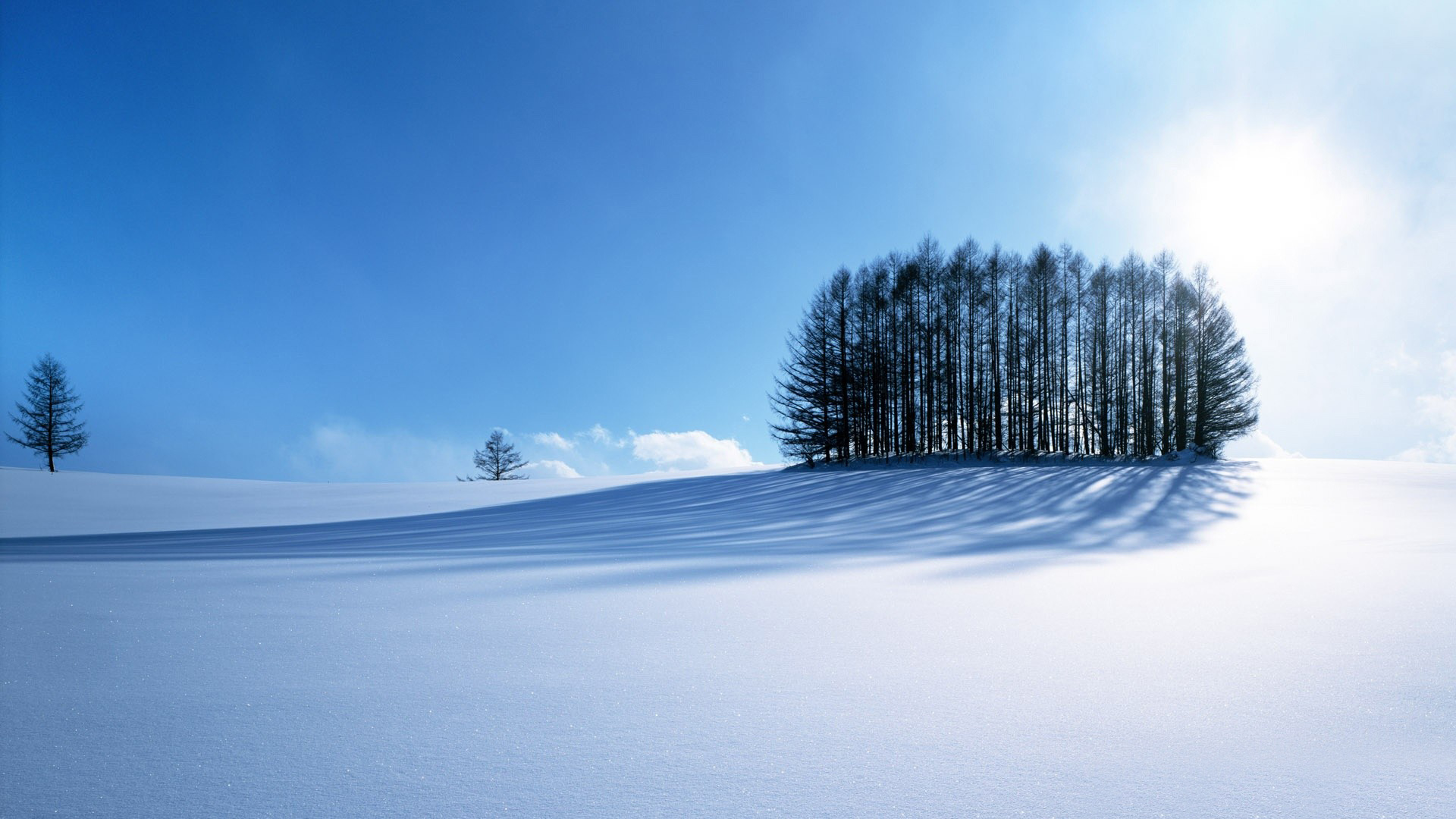 Scenery Wallpaper   With a Winter and Snowy Scene an Amazing One 1920x1080