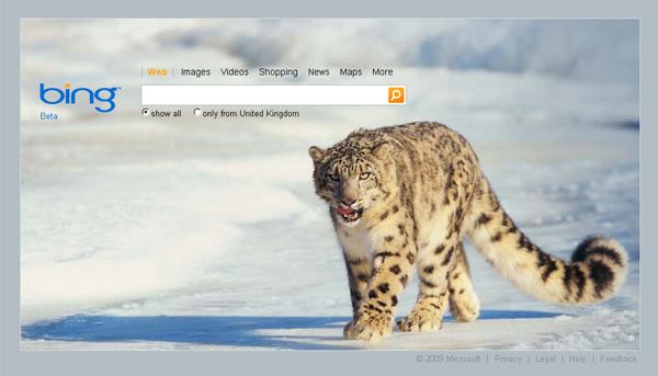 How to set bing images as Desktop wallpaper DIGITAL BITS   Tech 600x343