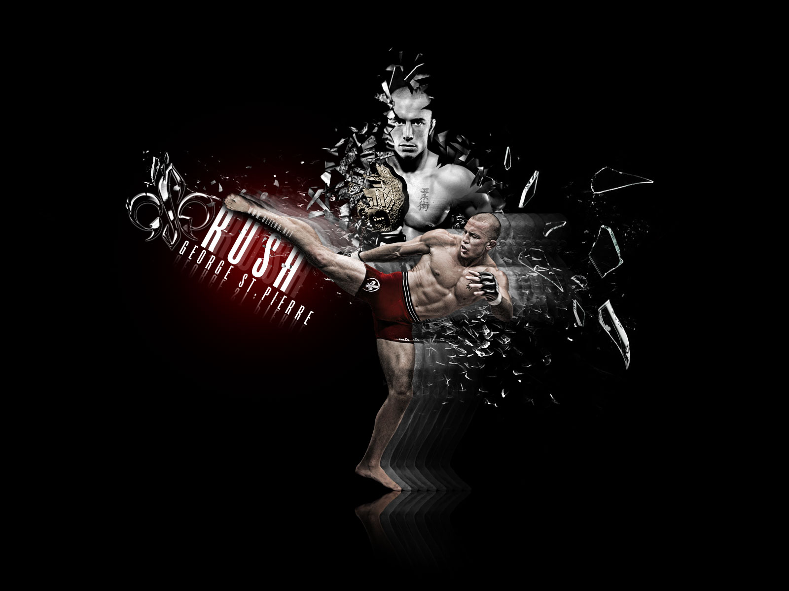 fighting championship mma mixed martial arts wallpaper background 1600x1200