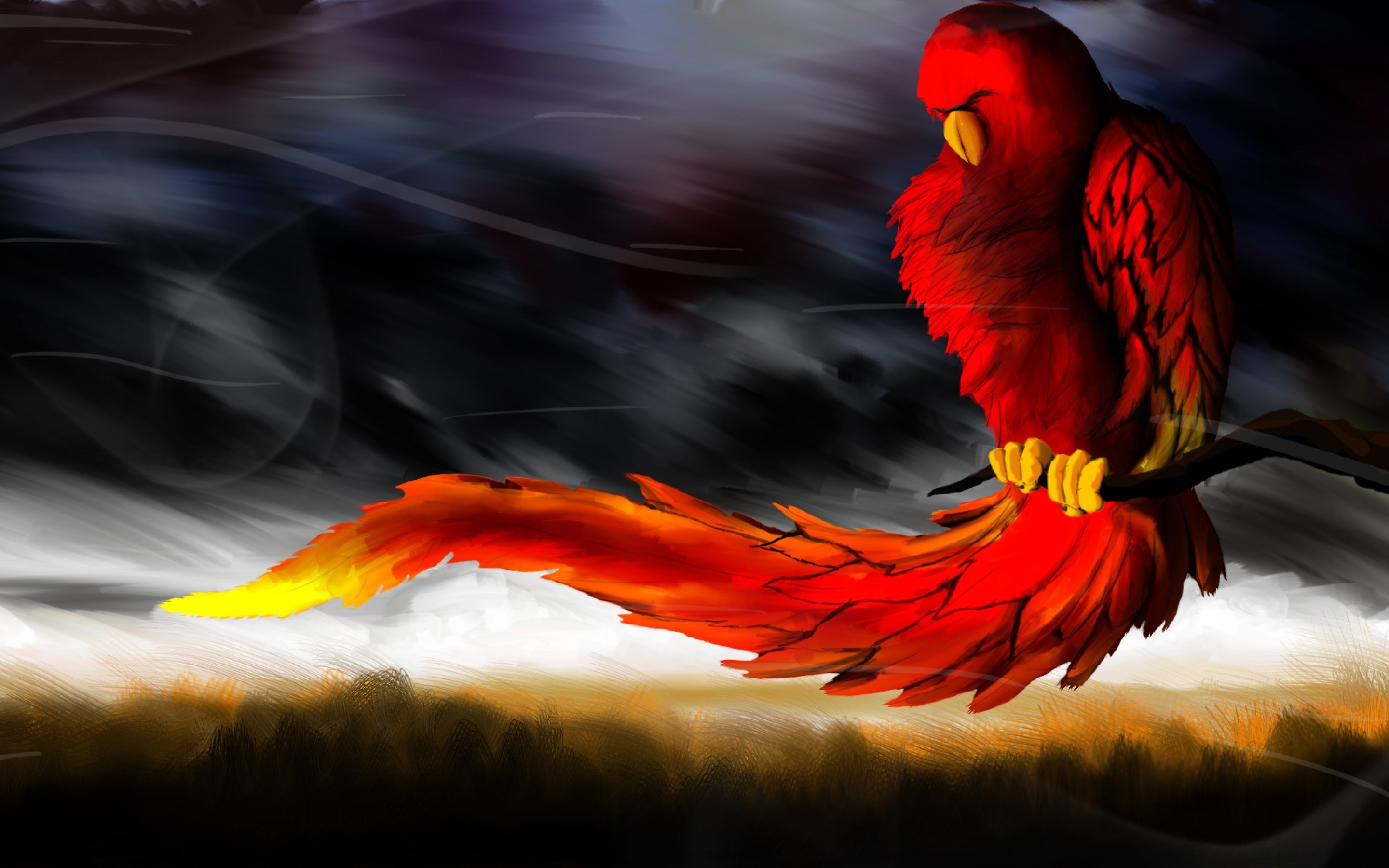Red bird clutched a branch in the wind wallpapers and images 2880x1800