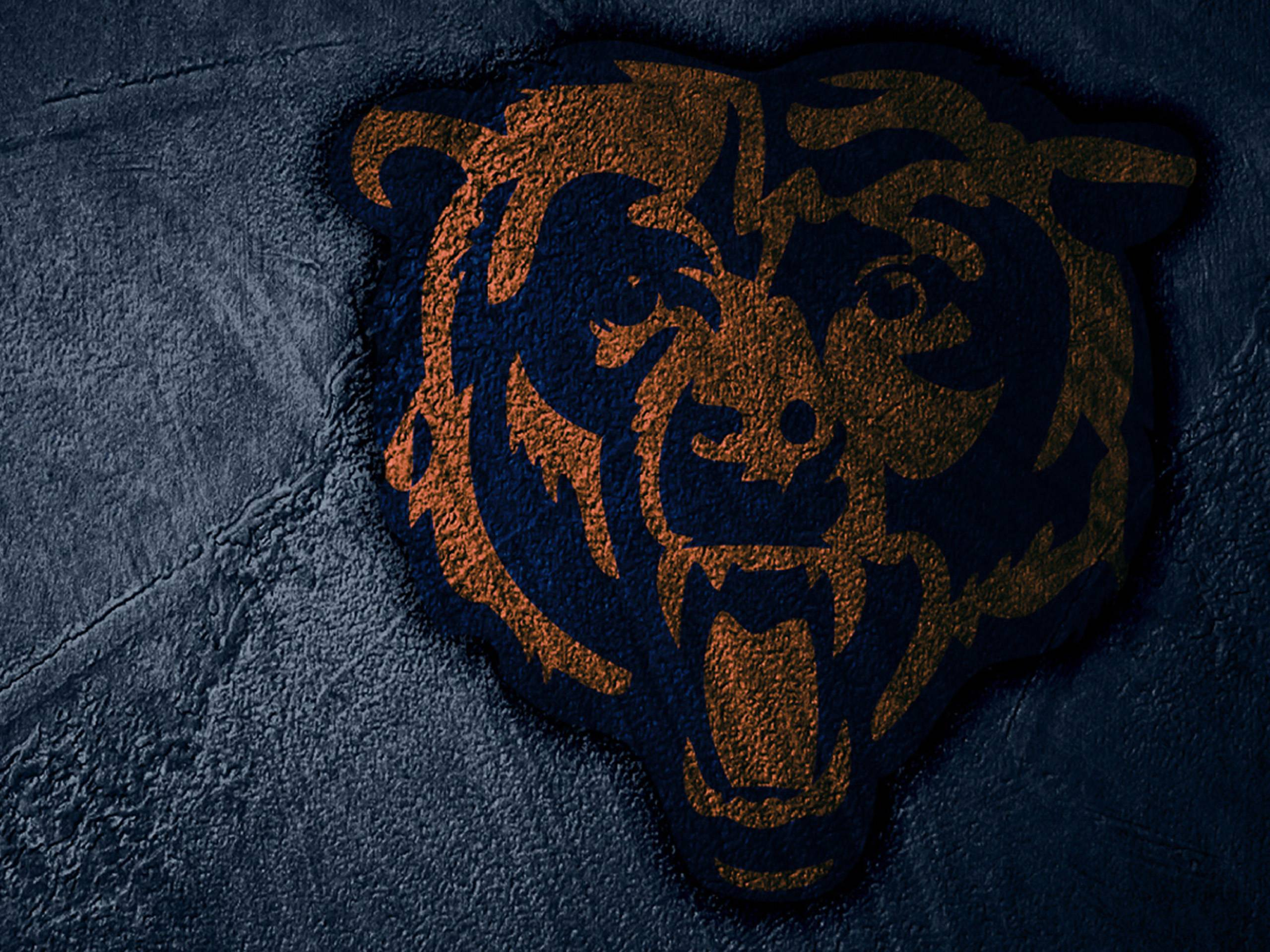Chicago Bears Wallpapers 2015 2560x1920